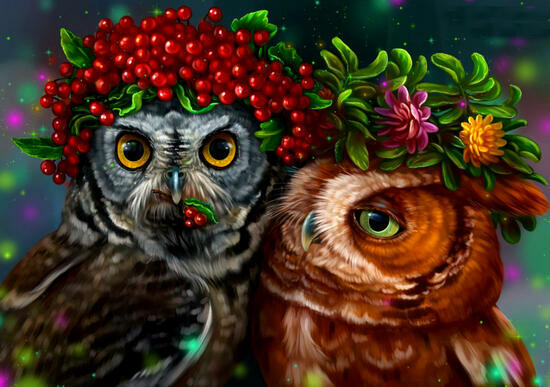 Картина по номерам 40x50 Две совы в веночках