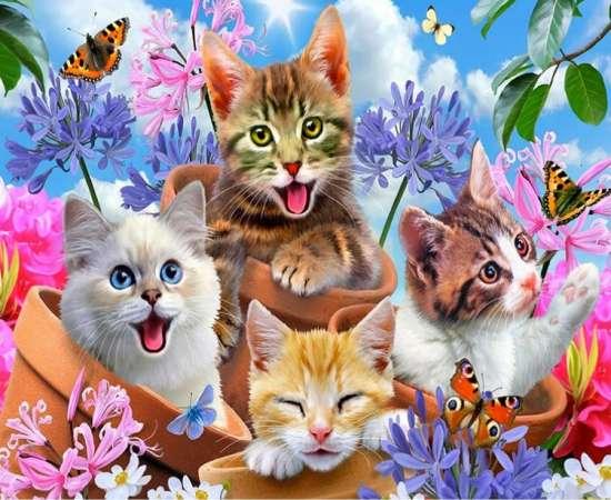 Картина по номерам 40x50 Яркие котятки, цветы и бабочки